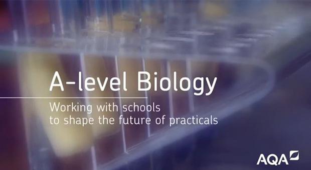 Biology A level question ?