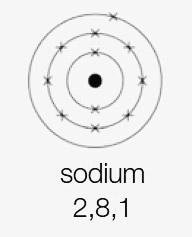 sodium 2,8,1