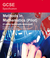 Linked Pair Pilot: Methods in Mathematics