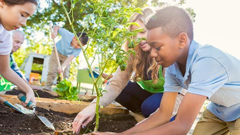 Young students gardening