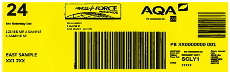 Sample yellow address label